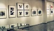 Galerie der Universität Leipzig,  2002