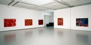 februar.04   Kunsthalle im art'otel , Dresden, 2004