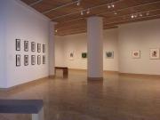 Visual Dialogues, Riffe Gallery Columbus 2009