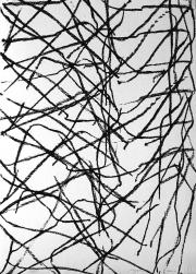 Algraphie, 2010, 70 x 50 cm