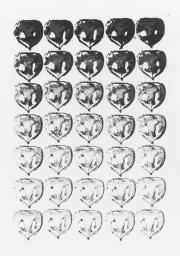 Mairübe 29.5.16 VIII, Tusche auf Papier, 41,7 x 29,6 cm