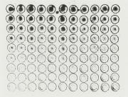 Rübe 22.12.16, Tusche auf Papier, 48 x 63 cm